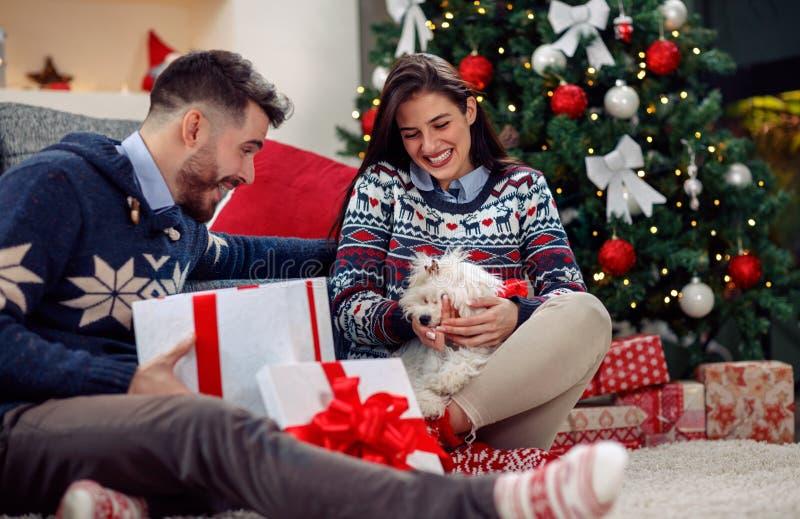 JulTime valp för jul arkivfoton