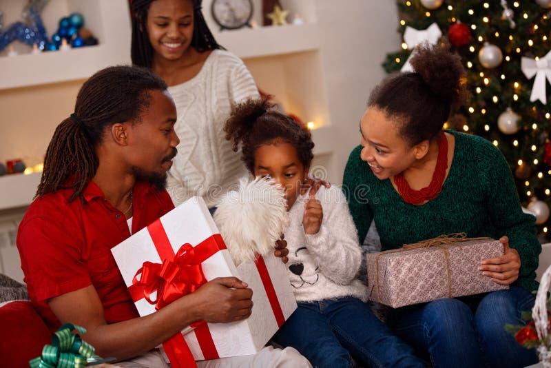 JulTime valp för julklapp royaltyfri bild