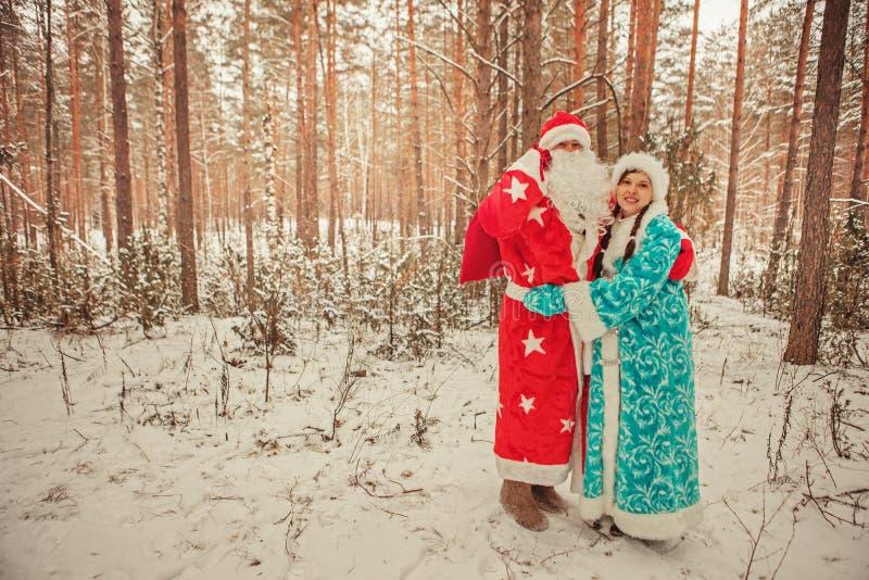 Jultomten. royaltyfria bilder