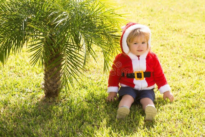 Jultomtenpojke på den gröna palmträdet royaltyfria bilder
