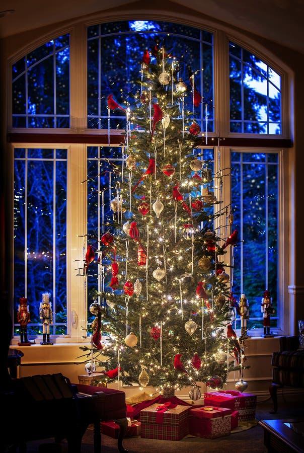 Julträd, blå kvällsljus genom fönster royaltyfria foton