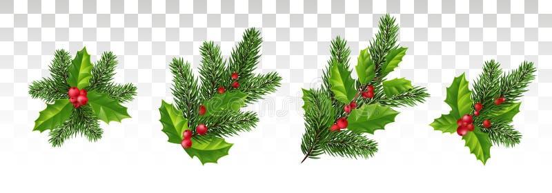Juluppsättning för garnering Sörja filialer och järnek med rött l stock illustrationer