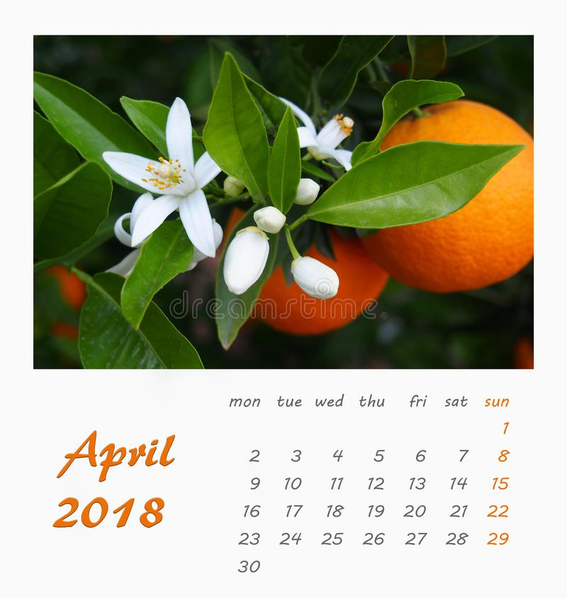 July Desk Calendar 2018 Template Flyer Design . Valencia Stock