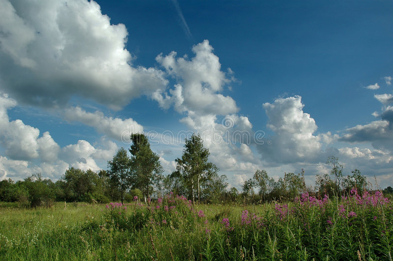 The July`s clouds. July 2004, Russia, Moscow area, Nikon D70 kit stock image