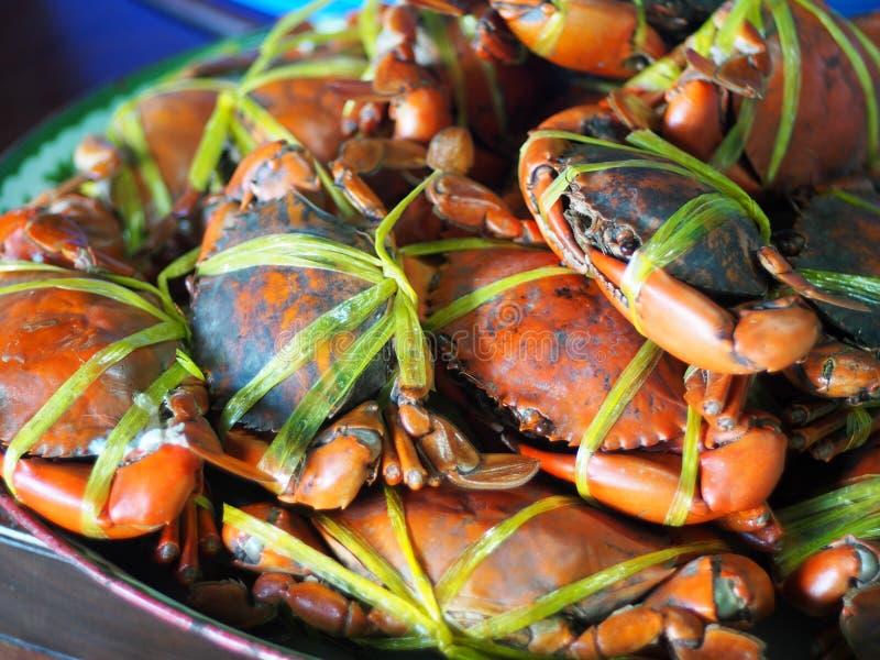Jumboformatet kokade lagade mat havskrabbor i orange färgtidvatten med det gula plast- repet arkivbilder