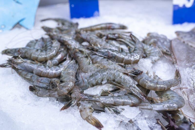 Jumboräkor på is på havs- skärm på supermarket royaltyfri bild
