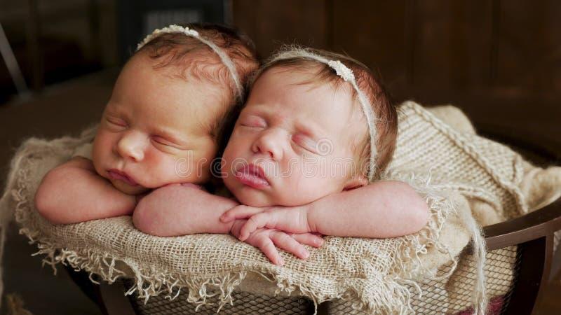 Jumelle des soeurs nouveau-nées dans l'enroulement image stock