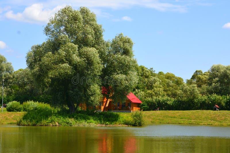 Jument d'Aita de lac Paysage rural typique dans les plaines de la Transylvanie, Roumanie photographie stock libre de droits