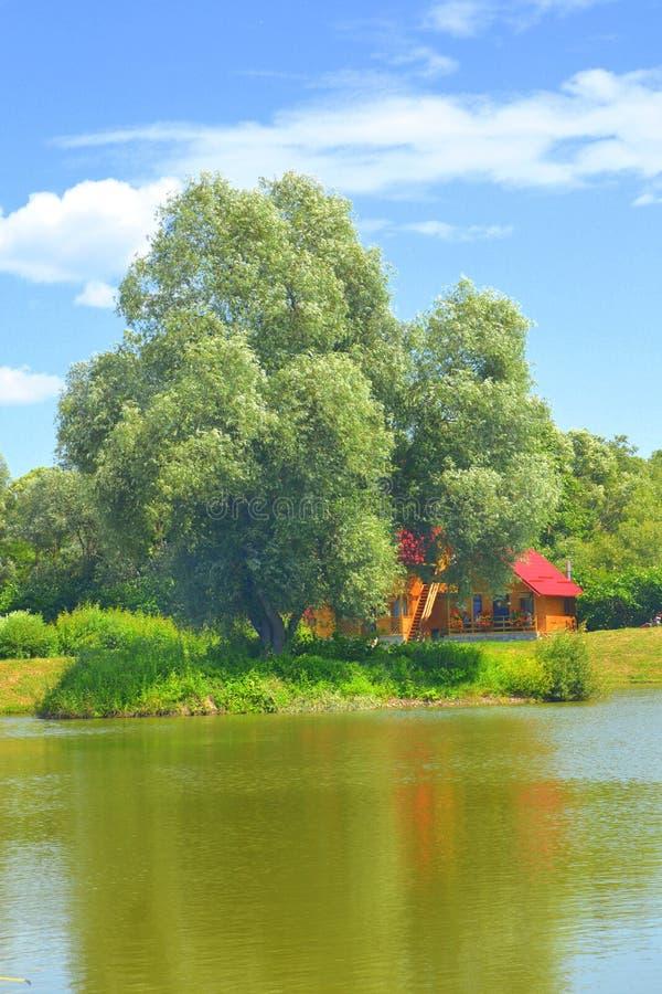 Jument d'Aita de lac Paysage rural typique dans les plaines de la Transylvanie, Roumanie image libre de droits