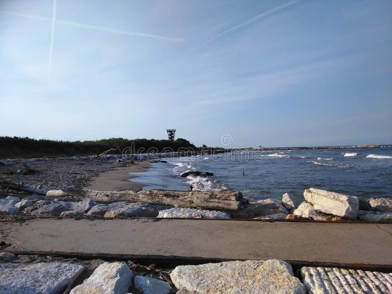 Jument de Rosolina en Italie photographie stock libre de droits