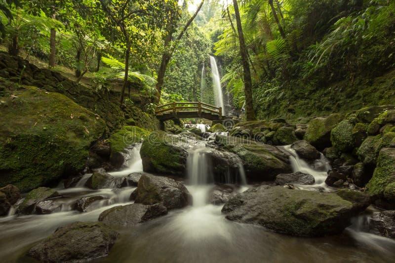 Jumog vattenfall arkivbilder