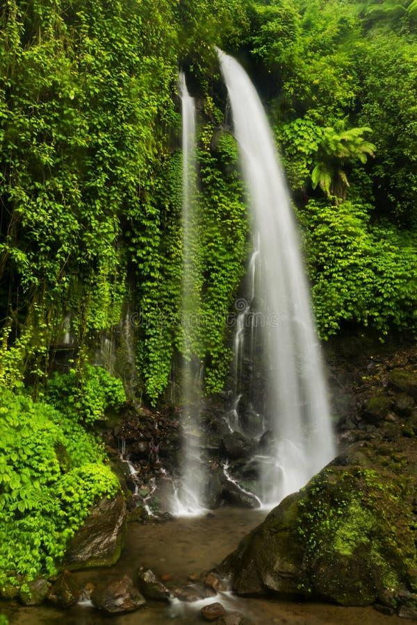 Jumog-Wasserfall stockfotos