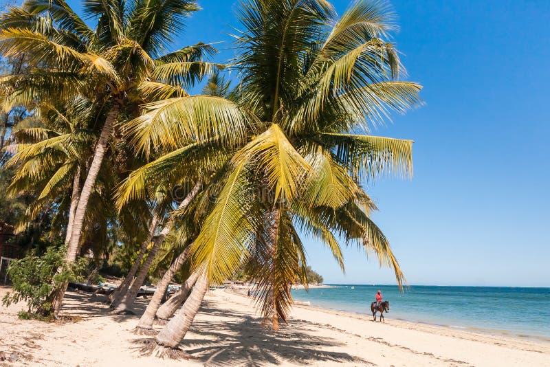 Jumper on the beach. Of Ifaty, southwestern Madagascar royalty free stock photos