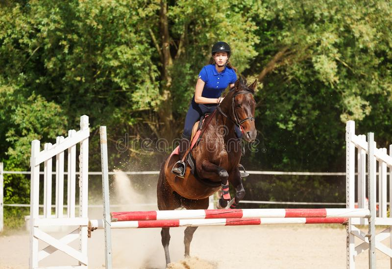 Jumping horse carrying horsewoman during training. At racetrack royalty free stock photo