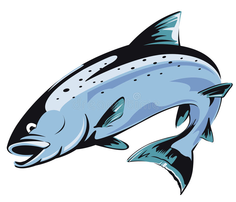 Jumping salmon. Illustration with transparent background