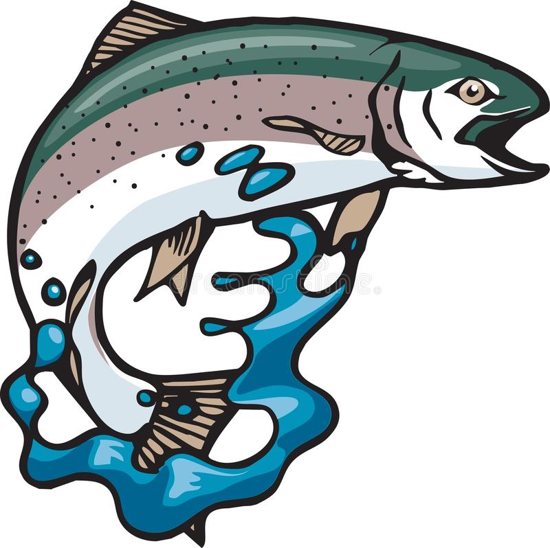 Jumping trout. A Rainbow Trout jumping and splashing. Use it on all sorts of outdoor sports sales publications and newsletters. Vector and high resolution jpeg vector illustration