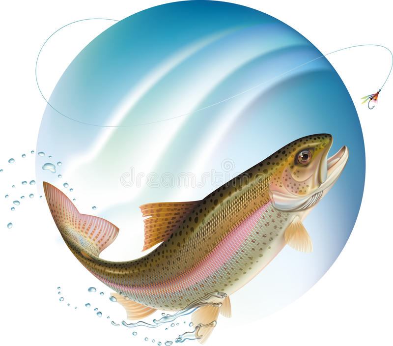 Jumping trout. Trout jumping for the bait with water sprays around. Vector illustration royalty free illustration
