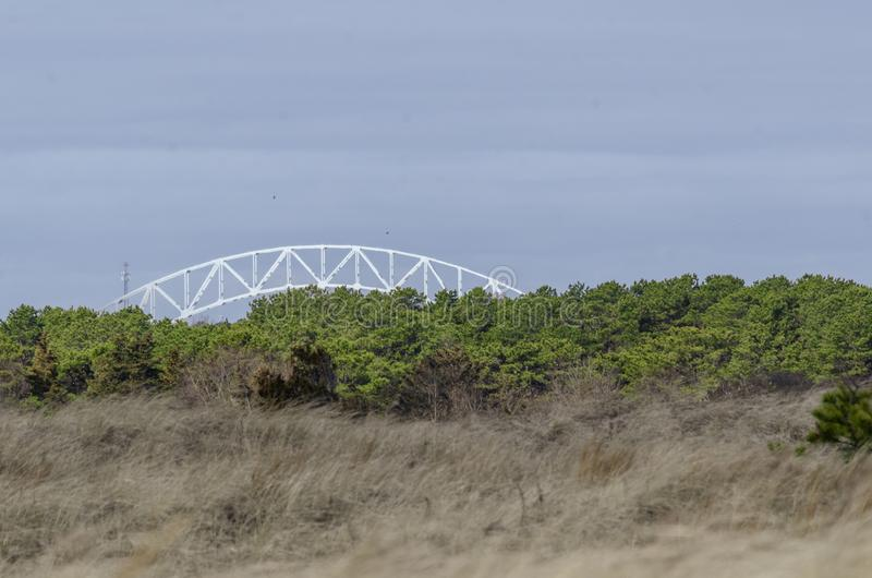 Junco e dunas chicoteados por fortes vento na praia de Scusset imagem de stock royalty free
