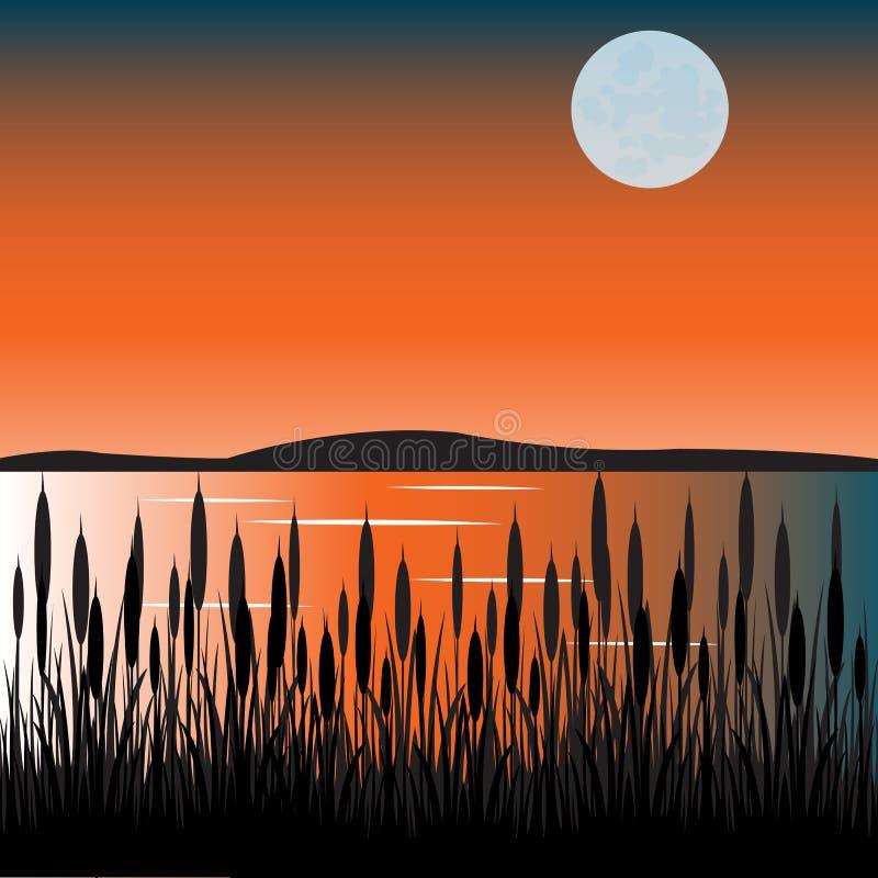 Junco no lago ilustração do vetor