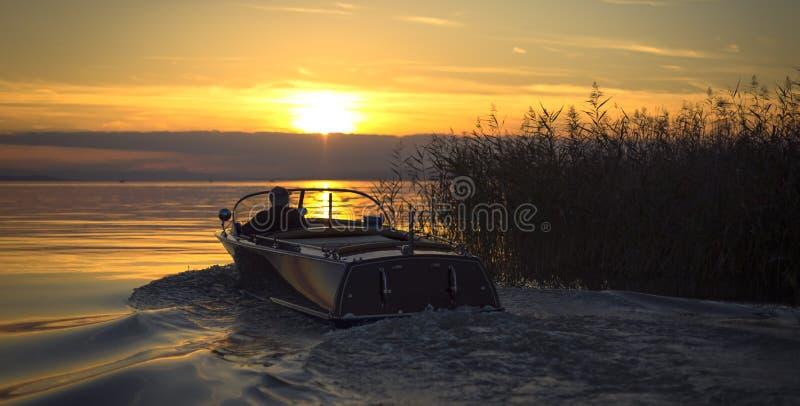 Juncos e barco de motor imagem de stock royalty free