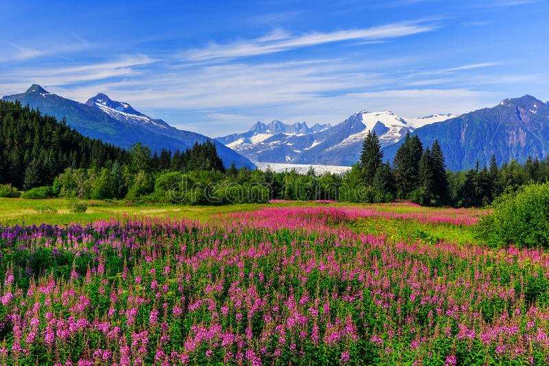 Juneau, Alaska stockfotos