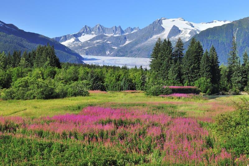 Juneau,capital of Alaska royalty free stock images