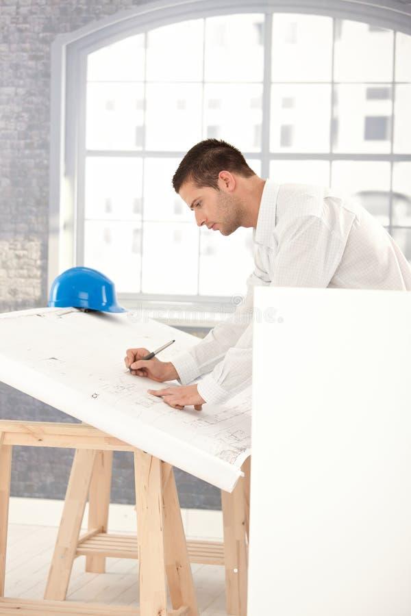 Junge Architektenzeichnungspläne stockfotos