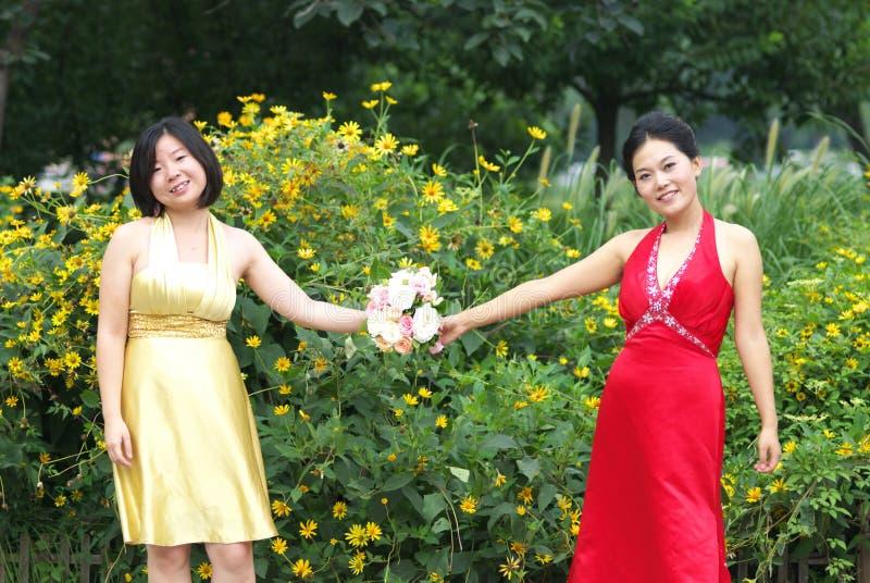 Junge asiatische Frauen lizenzfreies stockbild