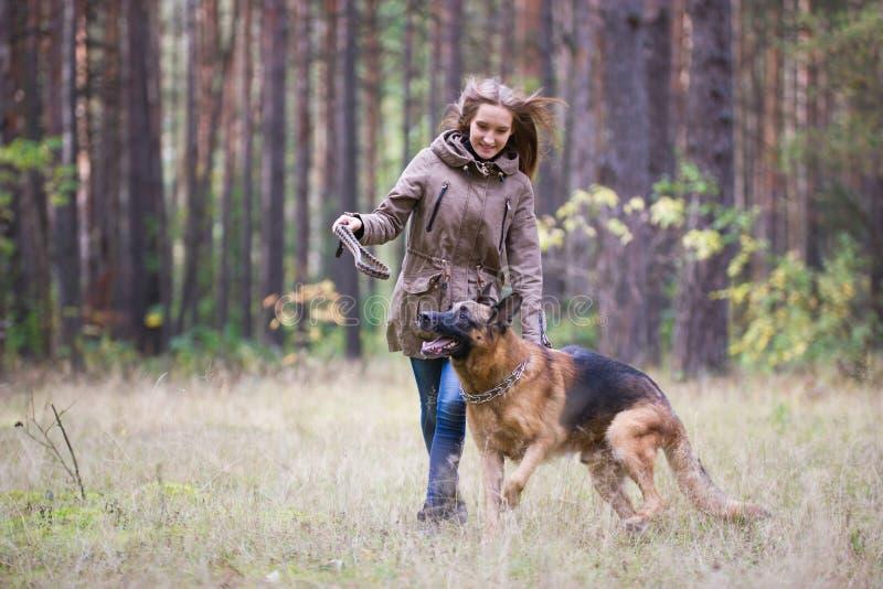 Junge attraktive Frau, die draußen mit Schäferhundhund im Herbstpark spielt stockfotos