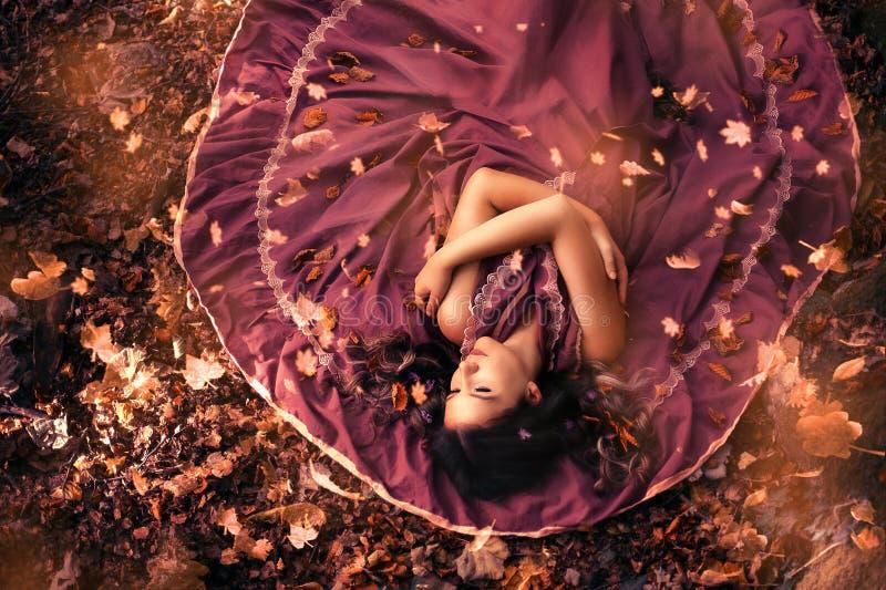 Junge attraktive Frau im purpurroten Kleid, das mitten in Herbstlaub liegt Draufsicht, Blattfallen lizenzfreies stockbild