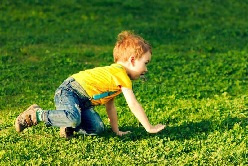 Junge auf Rasen des gr?nen Grases im Sommerpark, nett stockfotografie