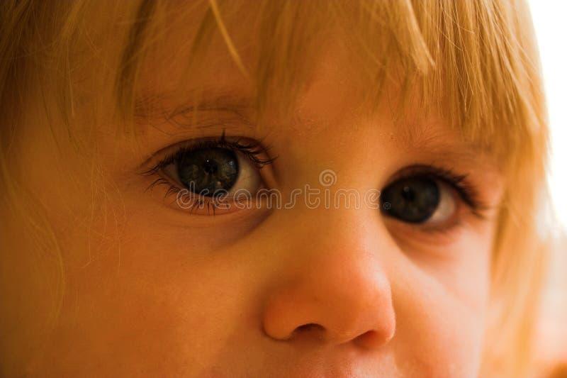 Junge Augen stockbild