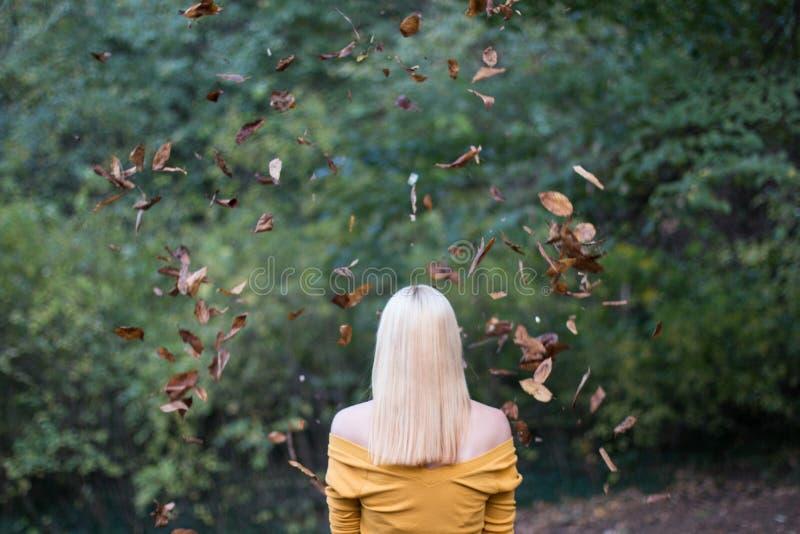 Junge Blondine von hinten, mit fallenden Blättern im Wald lizenzfreie stockfotos
