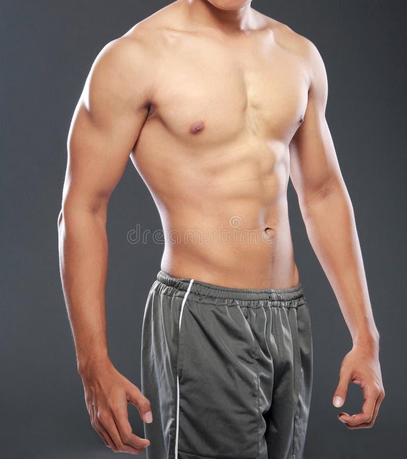 Junge Bodybuilder stockbild