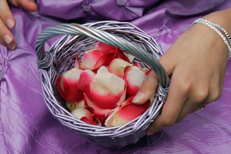 Junge Brautjunfer mit etwas Blumenblatt Confetti lizenzfreies stockbild