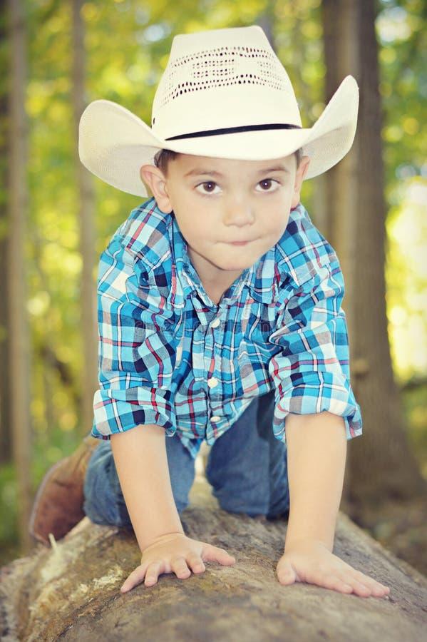Junge, der auf Baum-Stamm kriecht lizenzfreie stockbilder