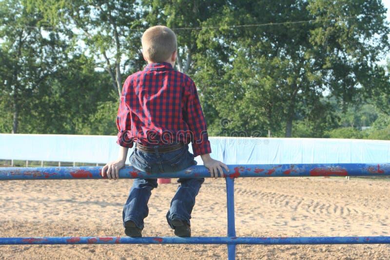 Junge, der auf einem Zaun sitzt stockfotografie