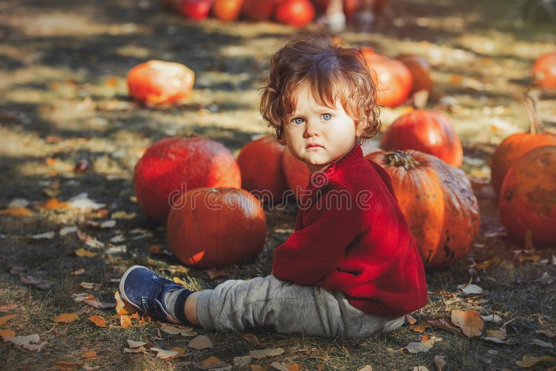 Junge, der auf Rasen mit Kürbise sitzt stockbilder