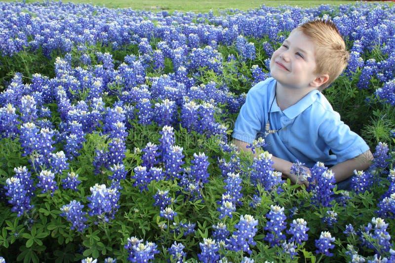 Junge, der beim Bluebonnetslächeln sitzt stockfotografie