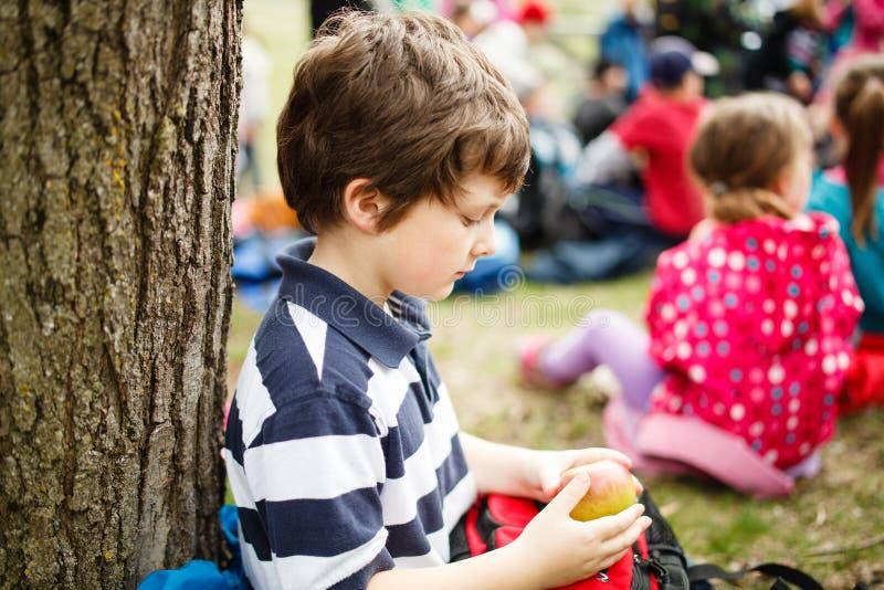 Junge, der durch einen Baum sitzt stockfoto