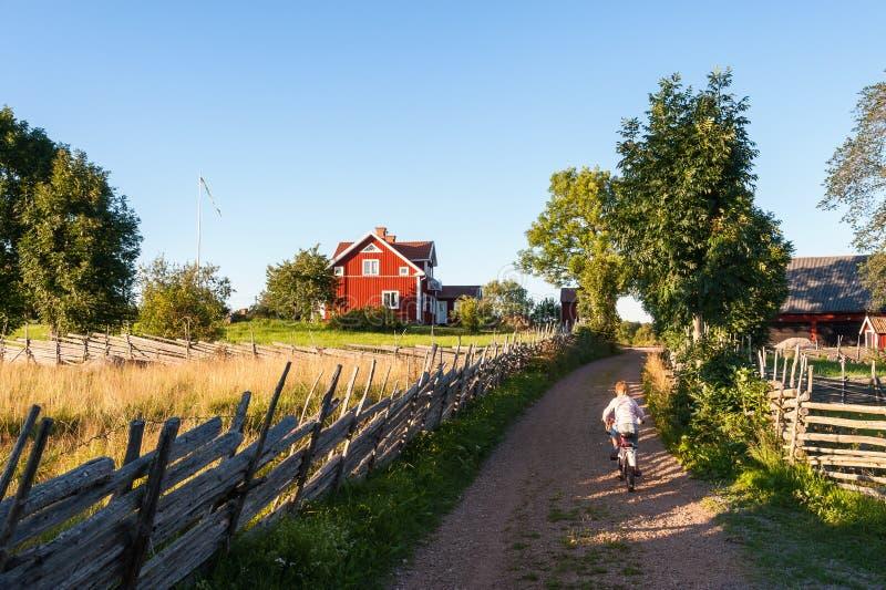 Junge, der ein Fahrrad in landwirtschaftlichem Schweden reitet stockfotos