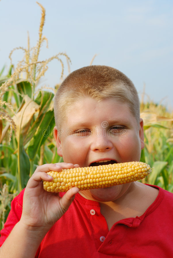 Junge, der frischen Zuckermais isst lizenzfreies stockfoto