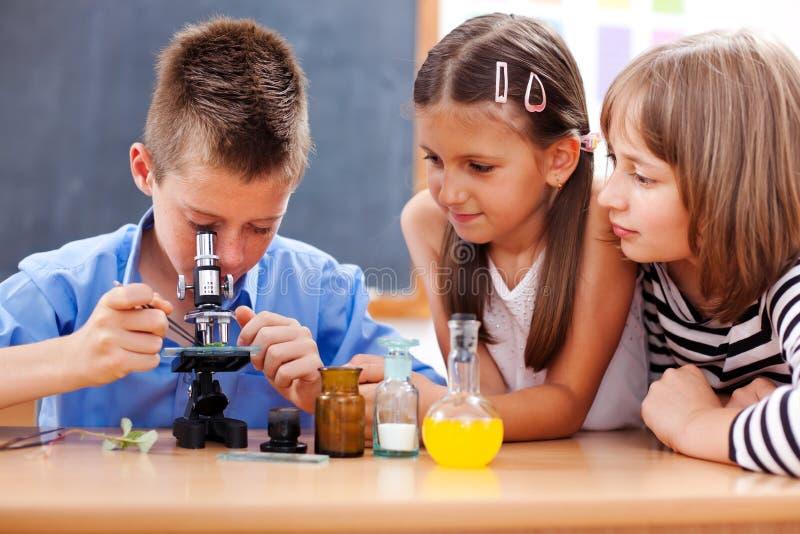 Junge, der Mikroskop untersucht lizenzfreie stockfotografie
