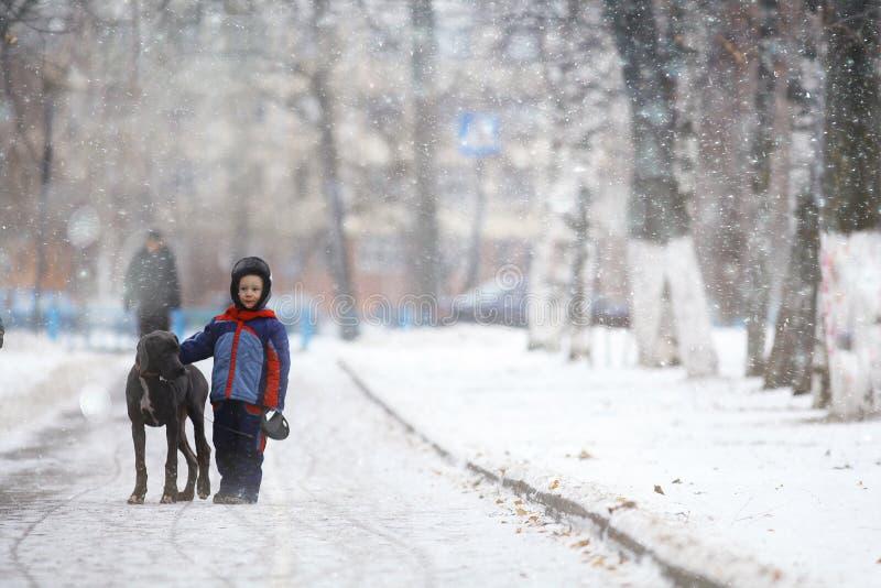 Junge, der mit einem großen Hund im Winterpark geht lizenzfreie stockfotos