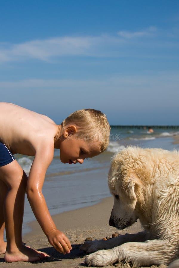 Junge, der mit Hund auf Strand spielt lizenzfreies stockbild