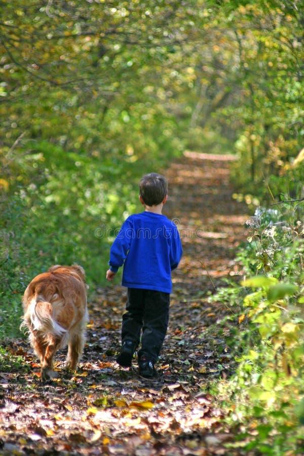 Junge, der mit Hund geht stockbilder