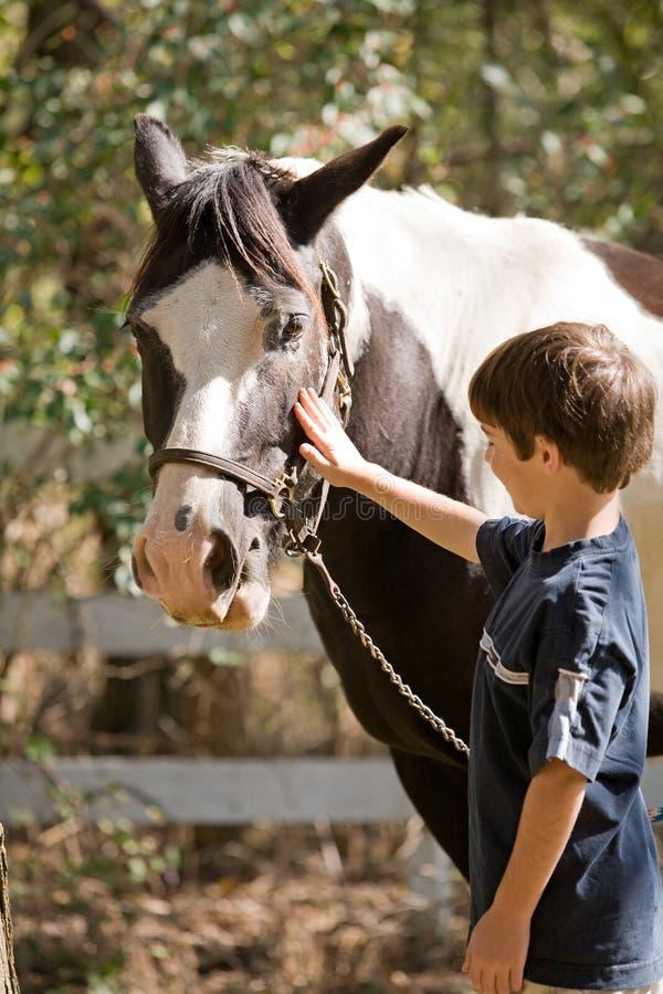 Junge, der Pferd Petting ist lizenzfreies stockbild