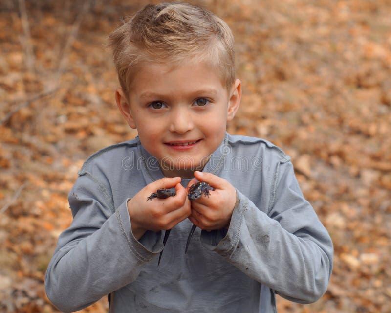 Junge, der Salamander hält stockfotografie
