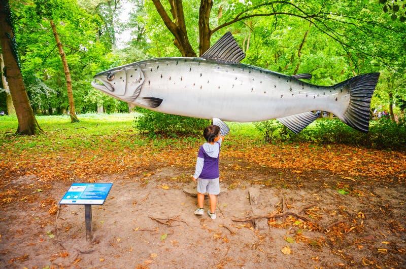 Junge durch vorbildliche Fische stockbild