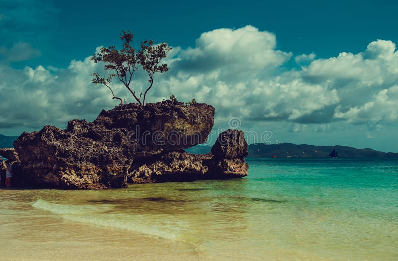Junge Erwachsene Reise zu Philippinen Luxusferien Boracay-Paradiesinsel Feld des grünen Grases gegen einen blauen Himmel mit wisp stockfotografie